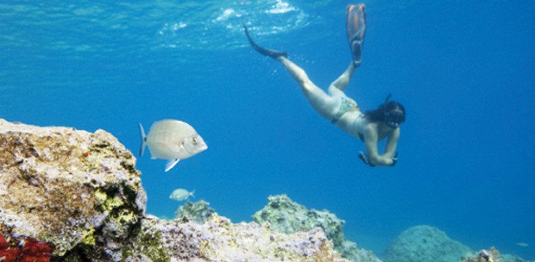 Diving and Snorkeling